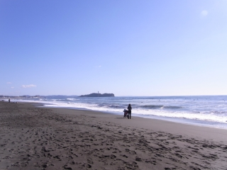 enoshima at new year
